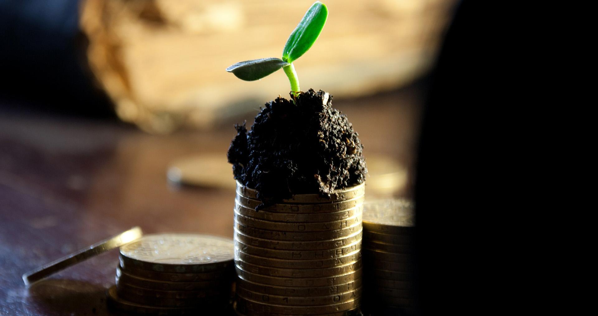 「この春から変わろう」お金を貯めるために新しく始めたい5つのこと