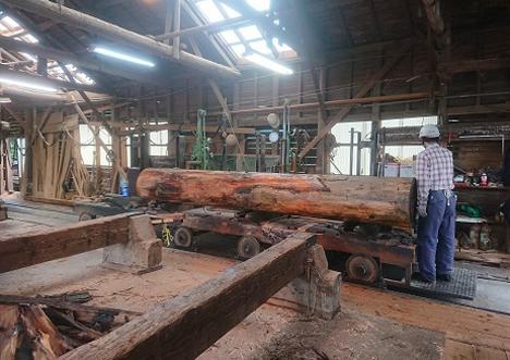 額箱「COUCHE」に関わった皆さんと、登米町森林組合の案内で、森の仕事を視察し意見交換を行いました
