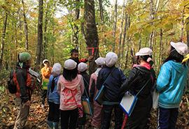 森林環境活動 写真提供:グリーンサンタ基金