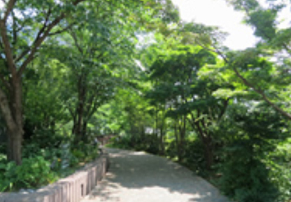 ThinkPark Forest
