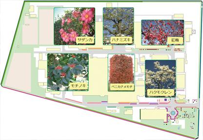 太田事業所緑地マップ