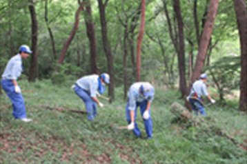 Kanayama Red Pine Forest Conservation Activities