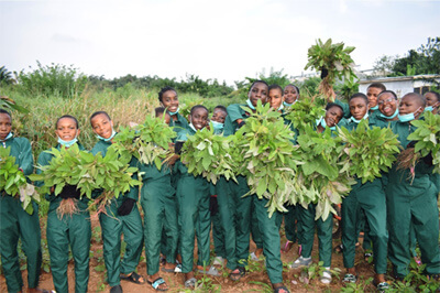 Springboardで持続可能な農業を学ぶ若者たち ©Springboard