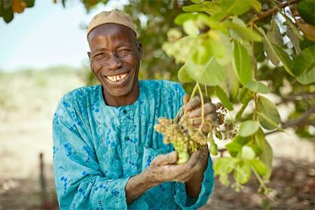 AtSource_Cashew Nuts_Farmer