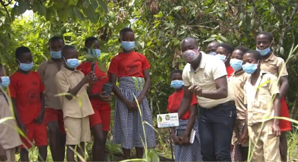 Shade tree planting project in Côte d'Ivoire