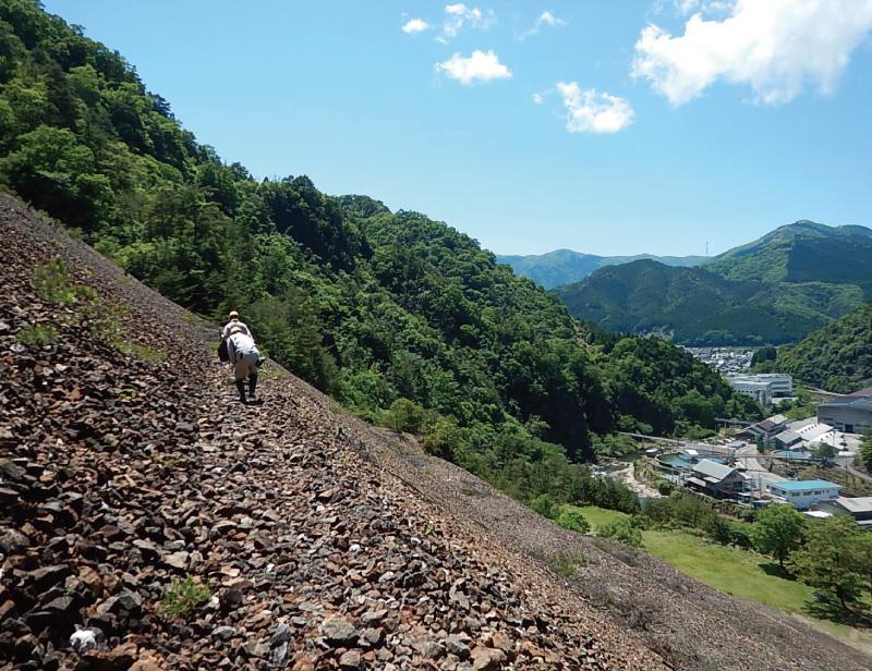 Tailings dam management (Ikuno Mine)
