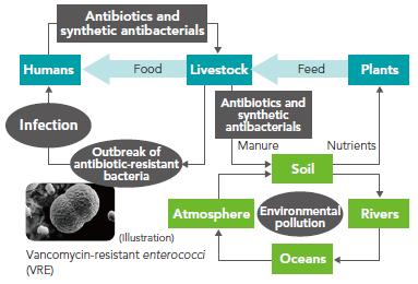 Antibiotic‐resistant Bacteria That Threaten Ecosystem Cycles