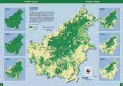 About half of the island's forest has been lost over the past 50 years