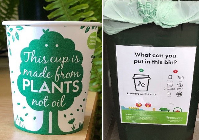 【Picture】eco_cups