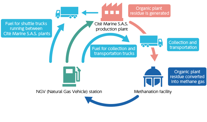 Collaboration with Partners in Recycling Through Methanation and the Recycling Loop