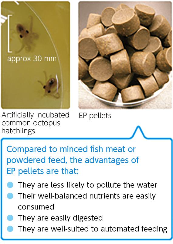 EP pellets