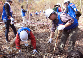 【Picture】The forest that protects spring water nurturing fish and the sea