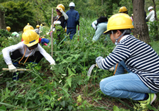 "Nissui Cooperated In The ""Exchange Meeting Of Green Scouts"" Sponsored By The Tottori Prefecture Planting Trees Promotion Committee"