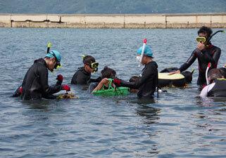 Jigyohama, Hakata Bay