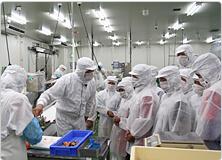 【写真】弓ヶ浜水産加工工場を見学