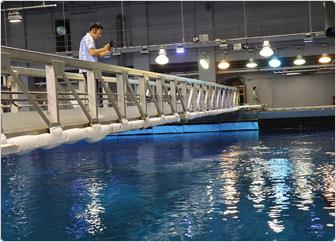 【写真】大水槽「黒潮の海」の上部にある橋の上から、iPadを使って水槽内を撮影