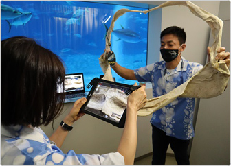 【写真】観察窓のある特別室から、大きなアゴの標本を手にジンベエザメの生態について説明