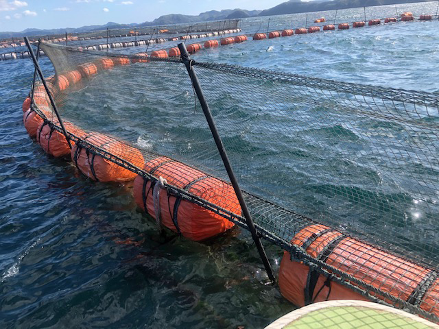 Floats used in marine aquaculture
