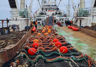 エムデペス社の漁具