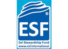 【ロゴ】>ESF