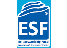 【Logo】ESF