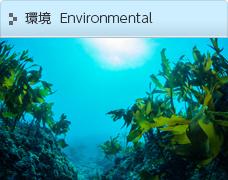 環境  Environmental