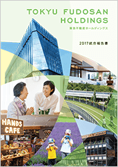 Integrated Report 2017 cover