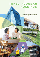 2017 Integrated Report
