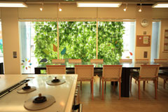 Plants growing against the walls and windows at the TG Kumagaya Building