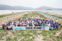 Tree planting test  in Takata-Matsubara