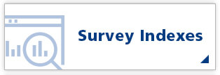Survey Indexes