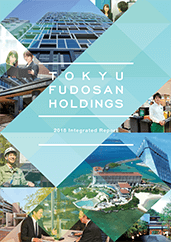 2018 Integrated Report cover