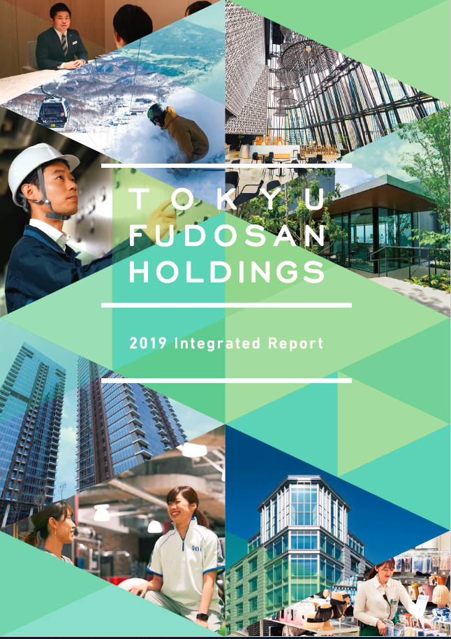 2019 Integrated Report cover