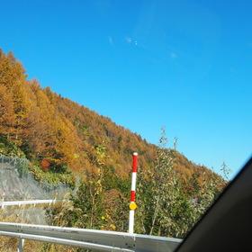小坂側からの紅葉