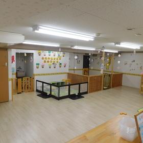 広い保育室