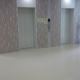 各階色が違うエレベーターホール