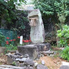 蛇神様(白龍神社)