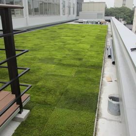 緑のある屋上