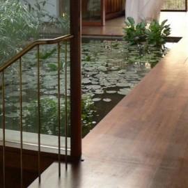 池/小川/水庭の画像3