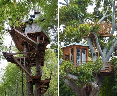 dornob~Custom Tree House Plans, DIY Ideas & Building Designs