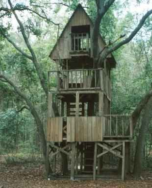 Smalltowndjs.com~High Quality Tree House Building Plans #7 How To Build A Tree House Plans