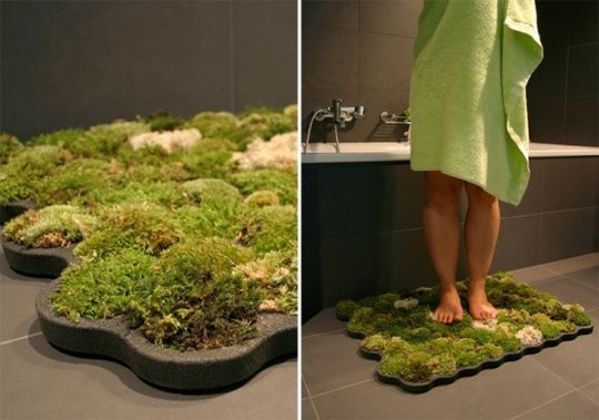 Indoor Gardening: Bathroom as a Garden