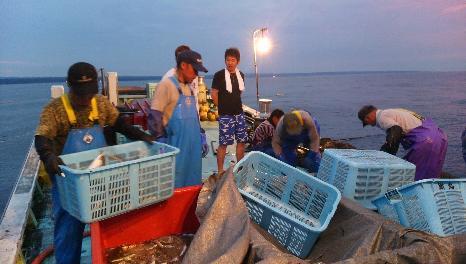 (4)夜が明けるころまで、漁は続きます。