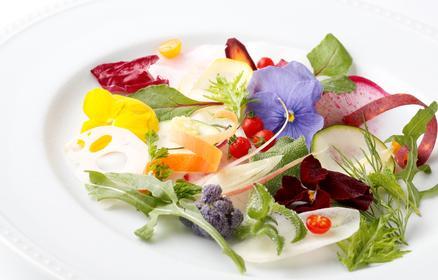 産直野菜や旬の食材をアナタのカラーで表現