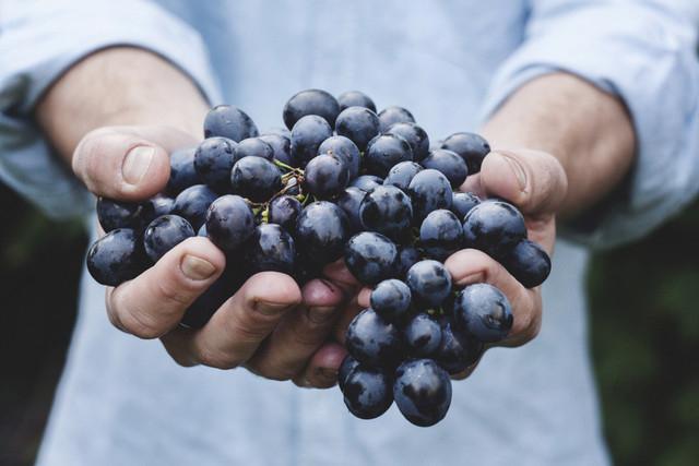 ワインを気軽に美味しく健康に!