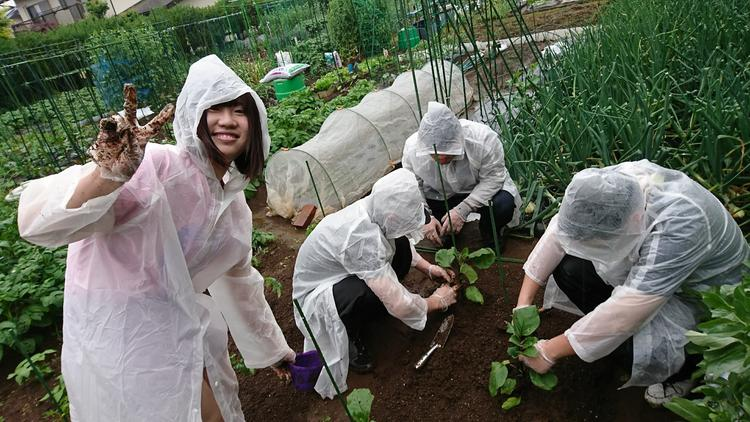 農業体験したり!