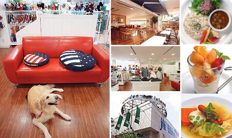 DOG DEPT CAFE 玉川店