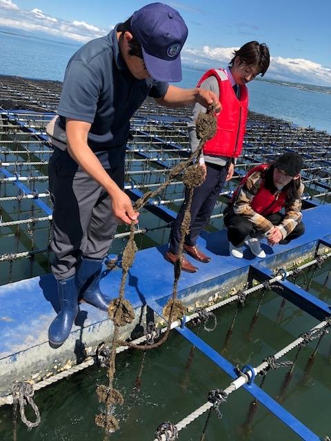 牡蠣の生産者への視察などもしております