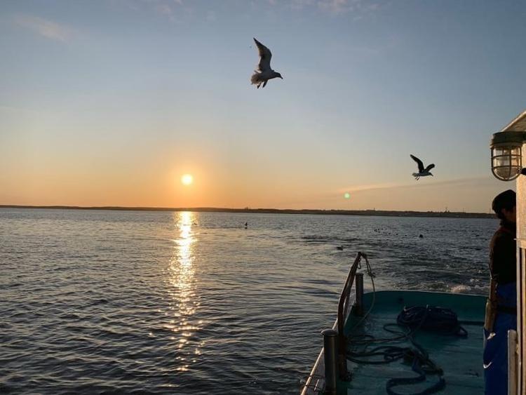 2019年10月下旬オープン〜海息吹(みぶき)〜【海の実りをふんだんに使った四季折々の料理】