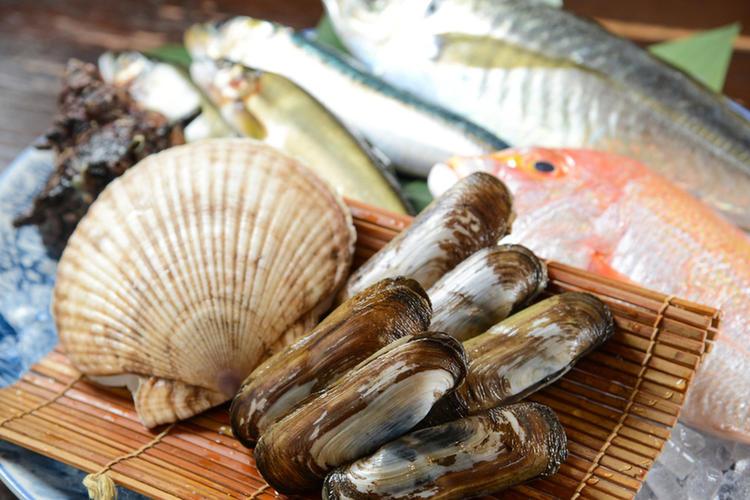 地元の新鮮な魚介類を提供